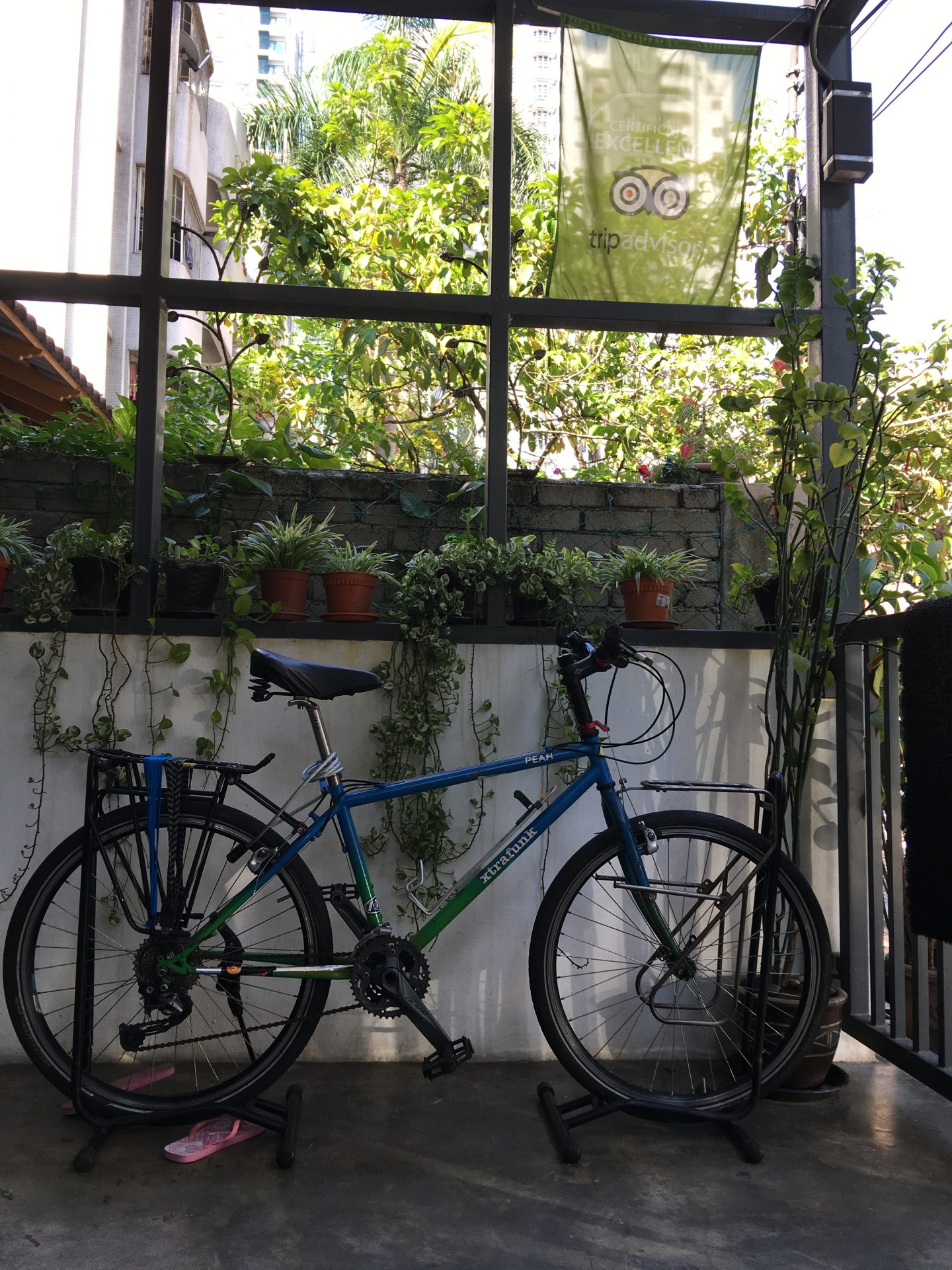 Illustrated by Sade - Bicycle at reception entry of Paper Plane Hostel in K.L.