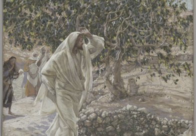 The Accursed Fig Tree, by James Tissot, c. 1886-94. Brooklyn Museum, New York, New York, United States. Via IllustratedPrayer.com