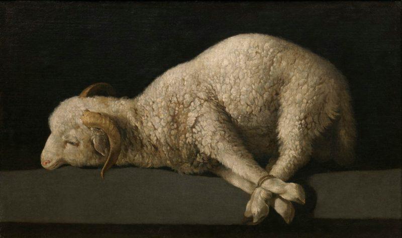 Agnus Dei, by Francisco de Zurbaran, c. 1635-40. Museo del Prado, Madrid, Spain.