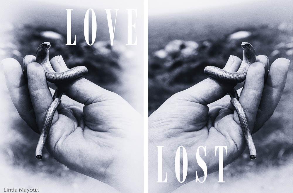 Love Lost 3 Diphtych