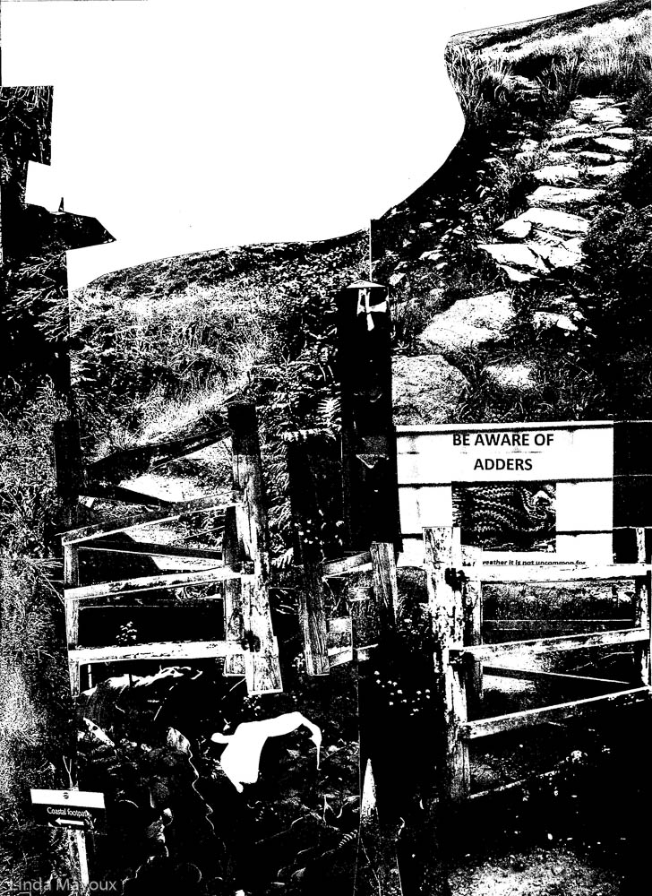 Way to Zennor 1 The Path black and white scan