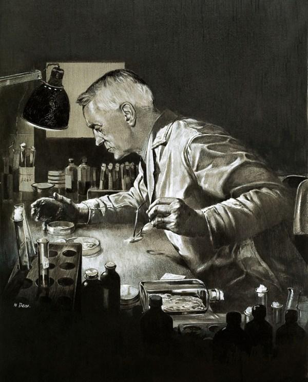 Alexander Fleming Penicillin