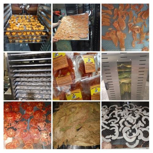 Сушенные продукты в сушке илмакс