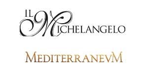 Il Michelangelo Online