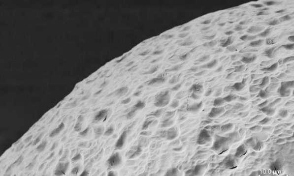 """Una superficie materiale scudo, qui illustrata, è stata progettata per fornire un """"mantello di invisibilità"""" contro le cellule del sistema immunitario del corpo. In questa immagine al microscopio elettronico, è possibile vedere il materiale in superficie topografica."""