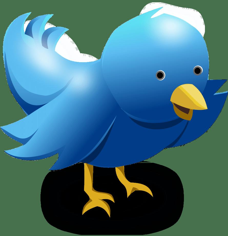 twitter, tweet, bird