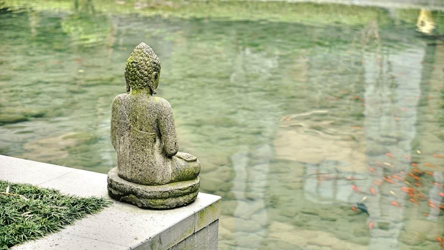 buddha, statue, pond