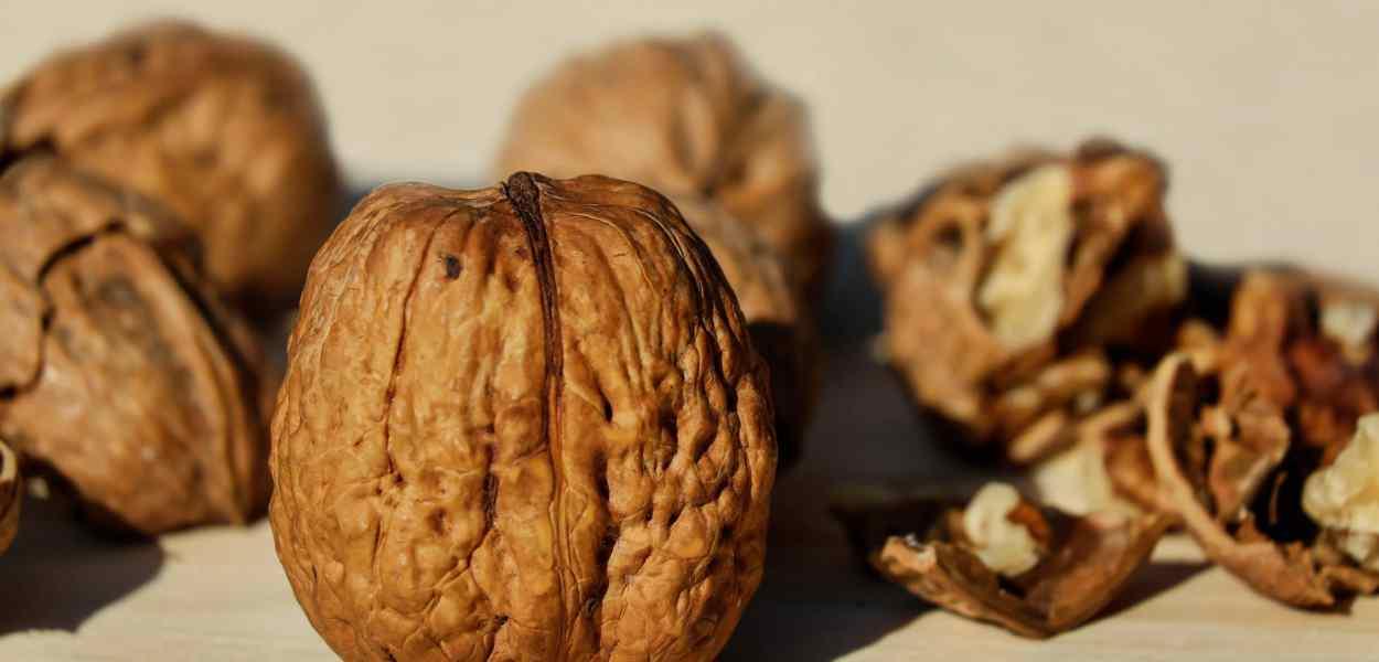 walnuts, shell, nut