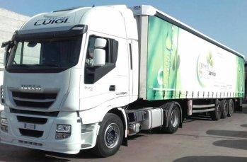 big-track-green-plastic-service