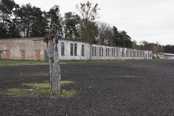 7 Comites Memoriale Ravensbrück Campo