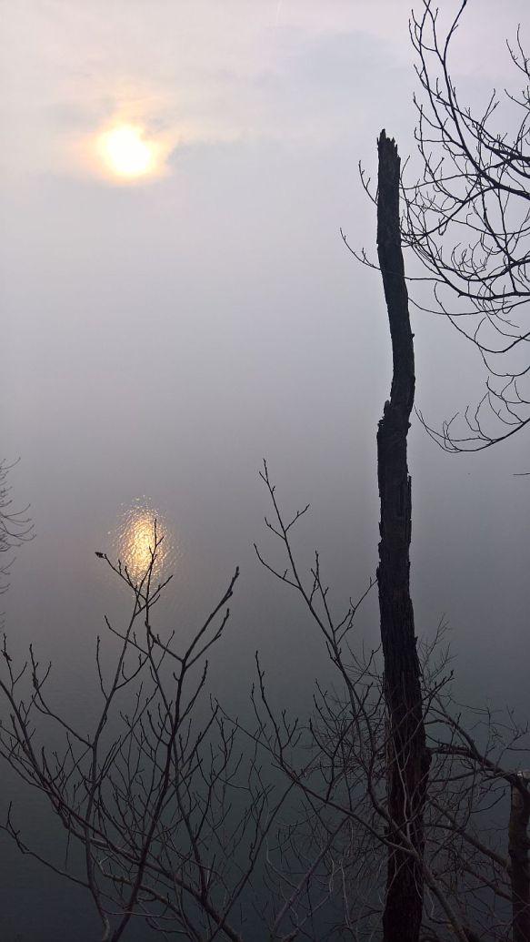 Foschia sul lago