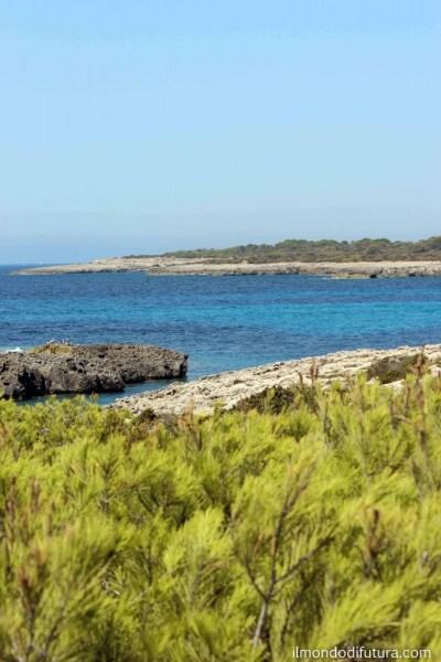 baia isole baleari spagna