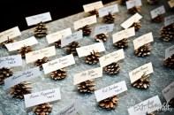 pine-cone-escort-cards