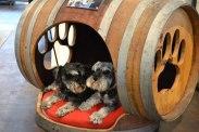 DIY-Ways-To-Re-Use-Wine-Barrels-11