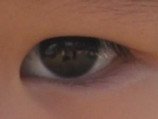 Cara Kerja Mata, bagian-bagian mata dan Tips merawat mata