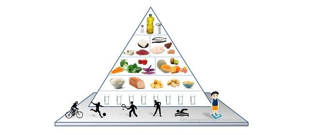 Pengertian Piramida Makanan (Gizi Seimbang)