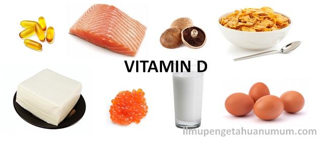 Makanan yang mengandung Sumber Vitamin D