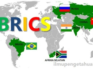 5 Profil Negara Anggota BRICS