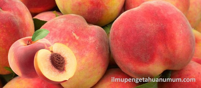 Nutritional content of peaches and health benefits of peaches