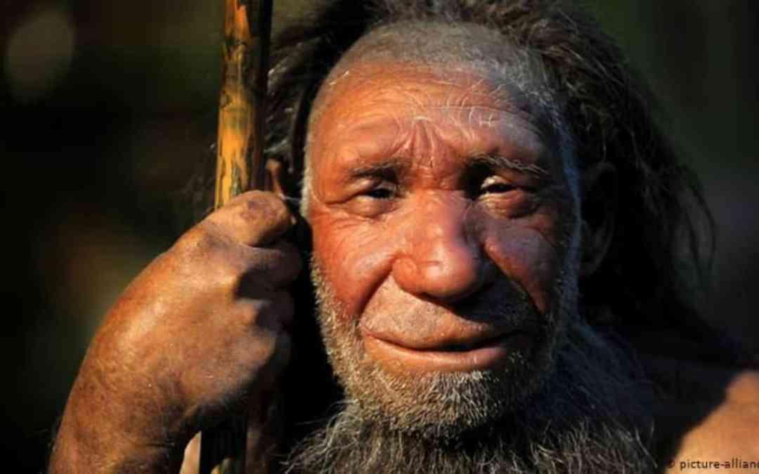 5 Fakta Tentang Neanderthal, Kerabat Manusia yang Punah