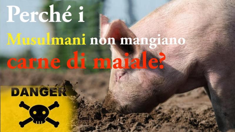 Perché i musulmani non mangiano il maiale, perché i musulmani non mangiano carne di maiale, perché i musulmani non mangiane carne suina, perché i musulmani non consumano carne suina, il maiale nell'Islam, carne suina nell'Islam
