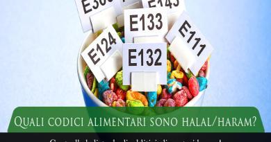quali codici alimentari sono haram, quali codici alimentari sono halal, lista additivi alimentari halal, lista additivi alimentari haram, tabella codici alimentari halal o haram