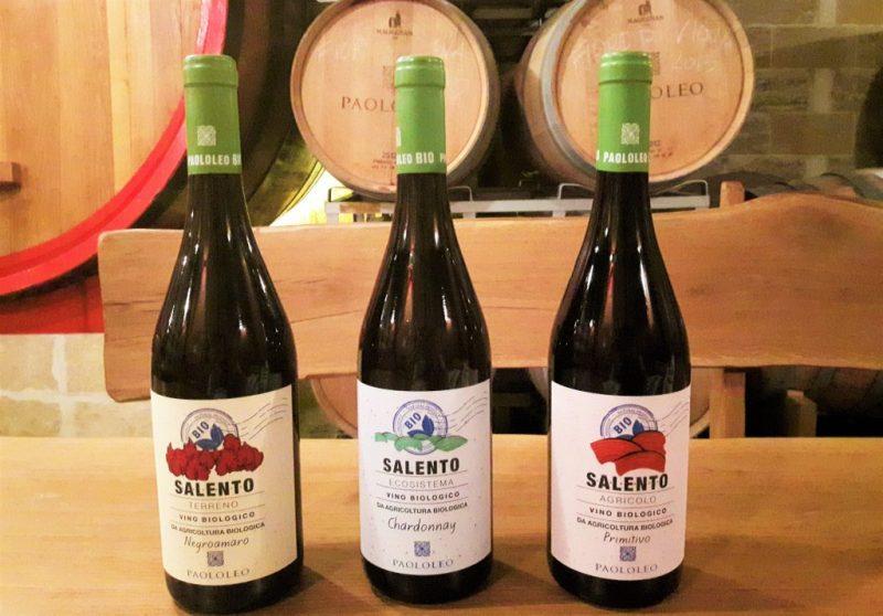 La linea dei vini biologici di Paolo Leo