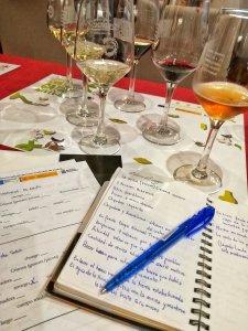 Degustazione Vinos de Lanzarote