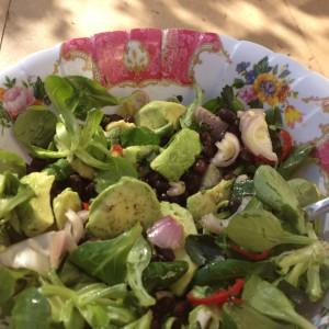 Boek recensie Supersalades van David Bez. Aanrader voor in je detox kuur. Snelle makkelijke salades, geschikt voor afvallen, dieet, detox kuur, paleo of veganisten.