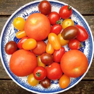 Tomaten zijn erg gezond en passend in een detox kuur. Denk eens aan het recept van zelfgemaakte detox pastasaus.