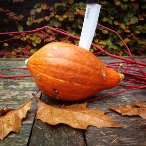 I Love Detox recept: Verwarmende Pompoensoep met gember, rode peper en kokos