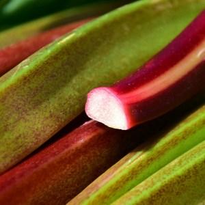 Rabarber aardbei compote zonder suiker. Een traktatie in je ontbijt, als bijgerecht of in een taart. Door gebruik van honing, kaneel of vanille kan je een natuurlijke zoetheid in gerechten brengen. Aanrader!