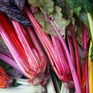 Buitenmarkt app,, ideaal om snel een locale boer te vinden die zijn biologische waar verkoopt