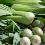 Waarom zijn groene groenten gezond? Dit artikel van detoxcoach Nico van Rossum neemt je mee op de gezonde groene tour!