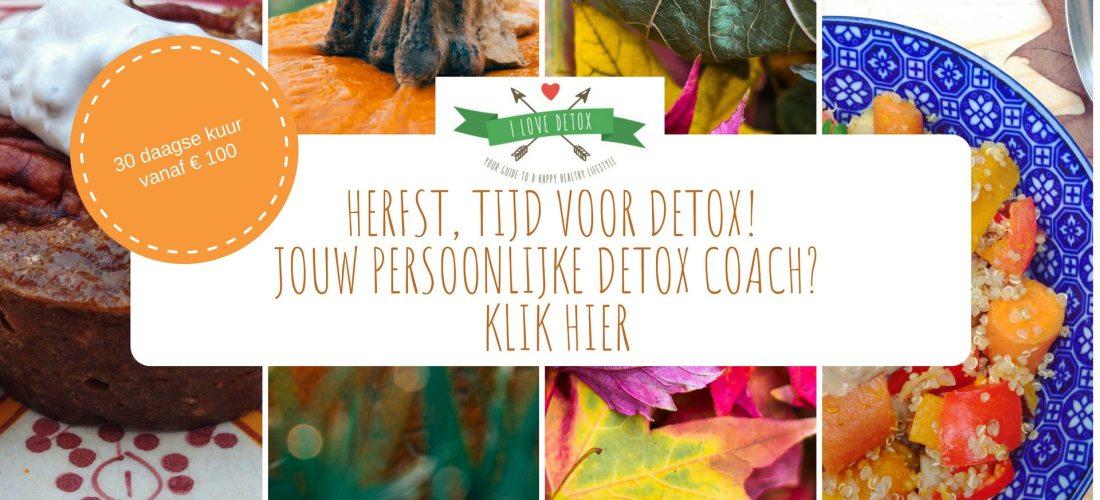 Een detox kuur, op maat gemaakt met persoonlijke begeleiding door een detox coach? 30 dagen detoxen om af te vallen, op gewicht te komen en gezond te eten: Detoxcoach Nico van Rossum helpt!