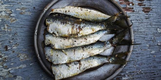 Più pesce ai bambini per prevenire le allergie!
