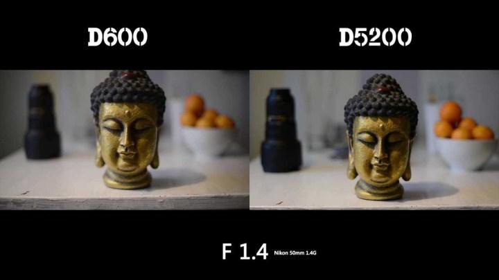 Full Frame Vs Dx Bokeh | Framess.co