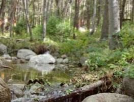 pic_outdoor_2e