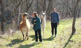 spring-trek-along-buffalo-creek-