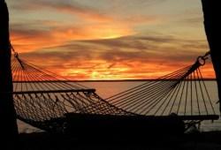 tilghman-island-hammock-sunset-550x412