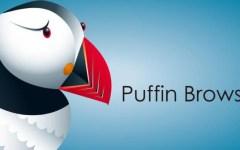 Puffin Browser Pro v7.1.3.18069 – Apk Download – Atualizado
