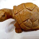 Tartaruga Saponaria, IStone