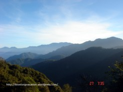 Gorgeous view on Alishan. On a good day, you can spot seas of clouds. Not fated to see such wonders that day.