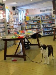 Animals allowed in a bookshop near Paddington Market :)