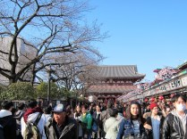 Another shot of how bustling Sensoji Temple is.