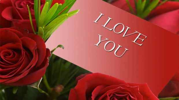 I love You roses Wallpaper for Her