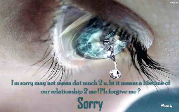 Beautiful sorry images with lovely quotes