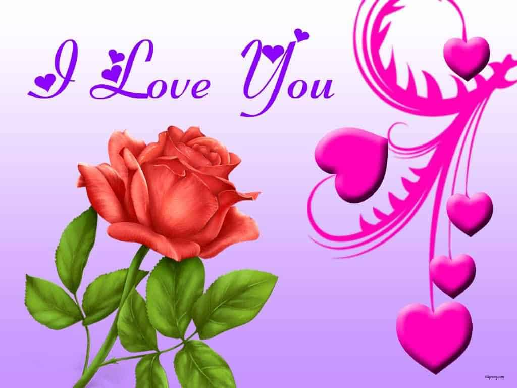 I Love You Image For Her With Flower ILove Messages