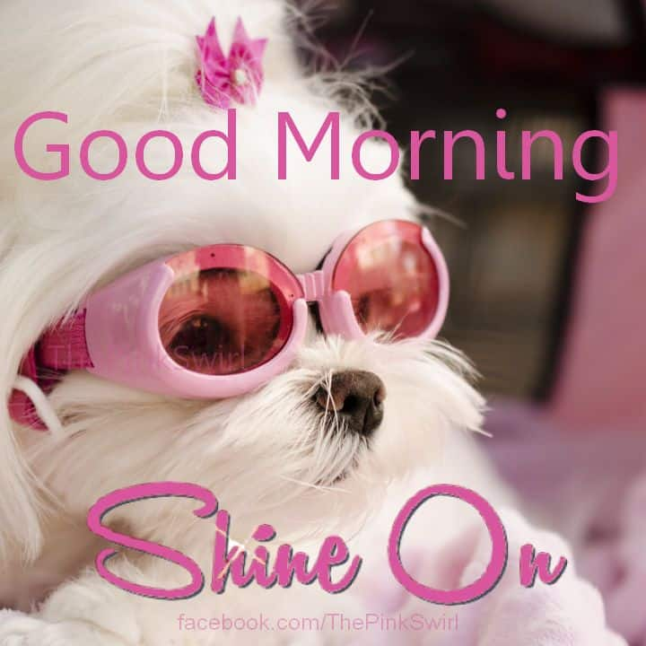 Good Morning Everyone Cute : Cute good morning quotes images for her and him ilove