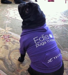 A Pug's Friendship With Telus